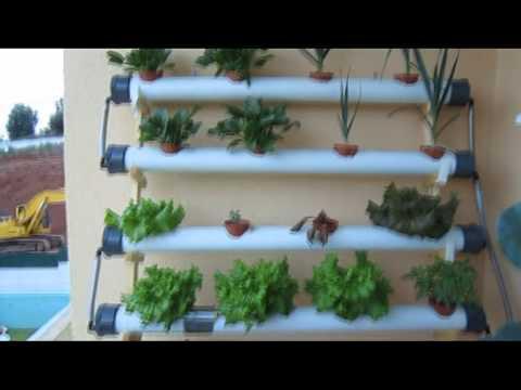 Hidroponia Urgbana / Hidroponics System