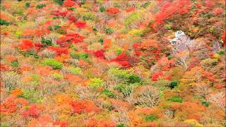 紅葉の雲仙ロープウエイ
