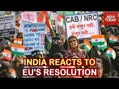 India Snubs EU Parliament Over Anti-CAA Resolution, Says Matter Is Internal: Sources