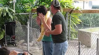 Snake Show on Crocodile Farm in Florida