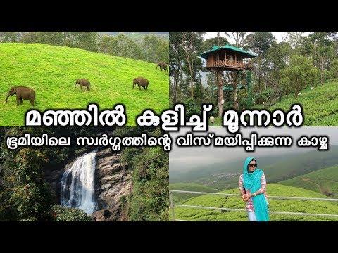 മഞ്ഞിൽ കുളിച്ച് മൂന്നാർ Munnar Kerala | Waterfalls | Tea garden | Dam | Fog | Spice garden
