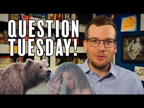 Good News, YA Books, and Bears: It's Question Tuesday