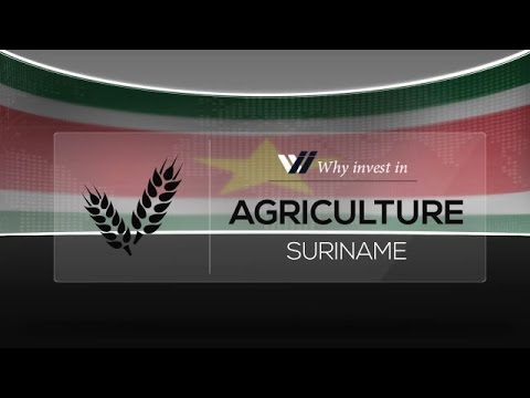 Agriculture  Suriname - Why invest in 2015