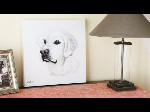 Pet portraits so good, we teared up.