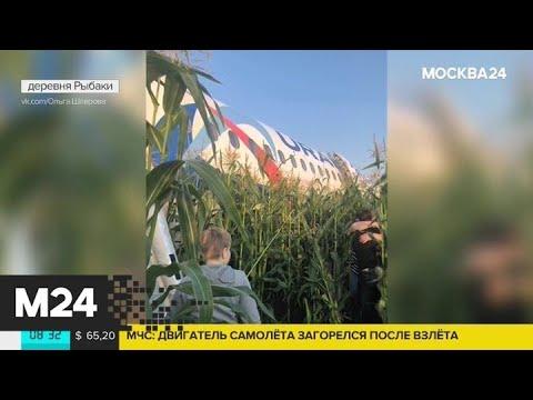 На место аварийной посадки Airbus А-321 прибыли 2 вертолета и 7 машин скорой помощи - Москва 24