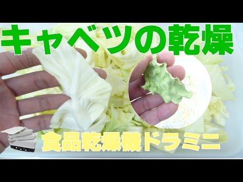 [野菜乾燥]食品乾燥機でキャベツの乾燥