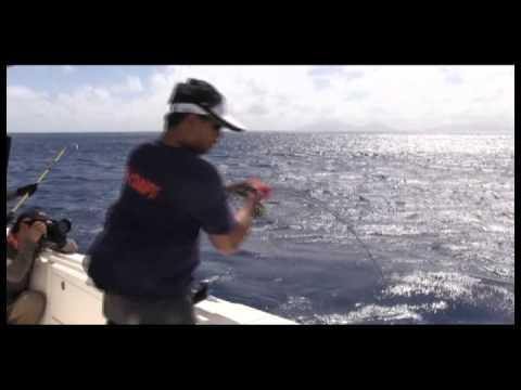 Vanuatu Fishing Clip 4