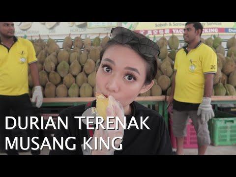 Travel Vlog - Malaysia day 2