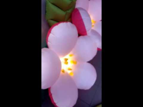 Пневмоцветы, раскрывающиеся цветы Яблоневый Цвет