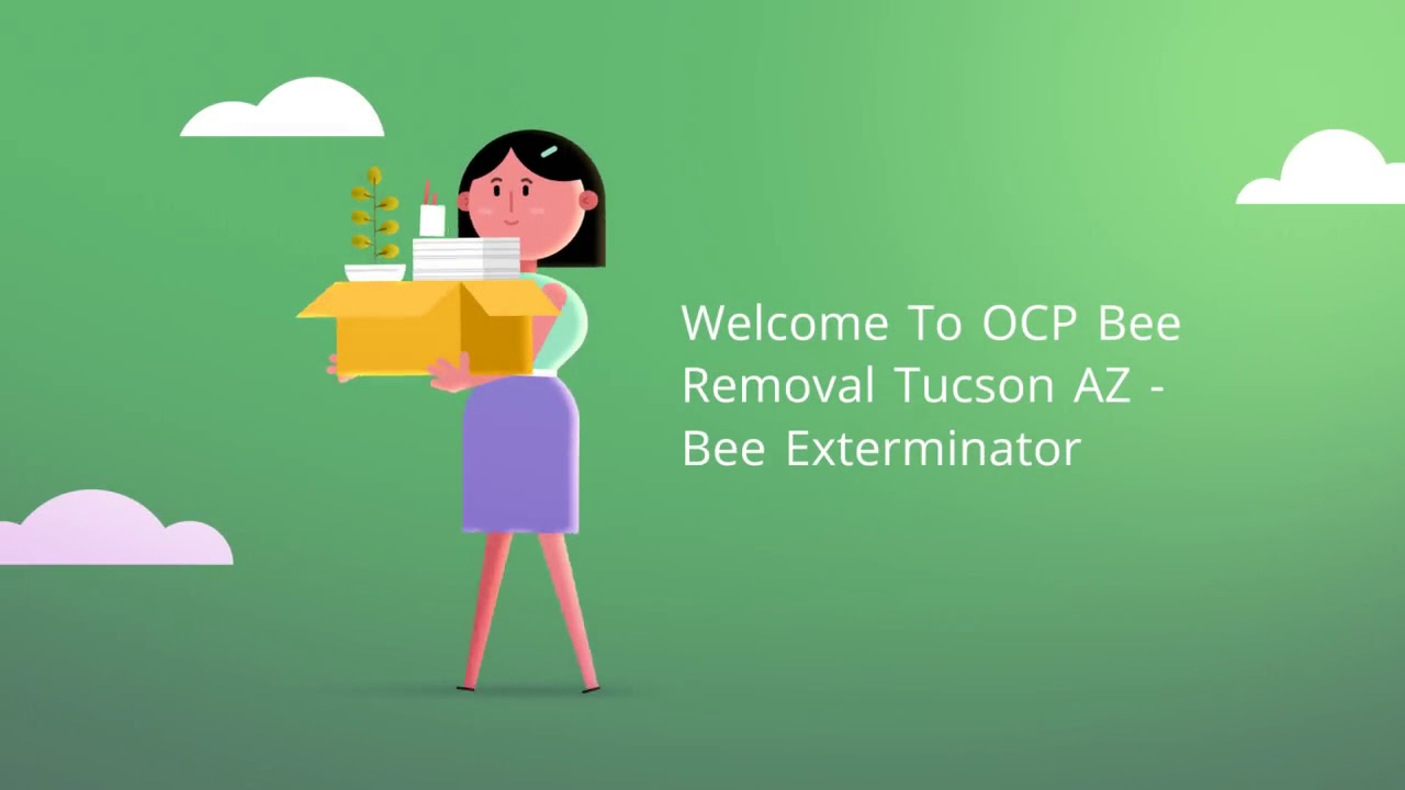 OCP Bee Removal Service in Tucson, AZ