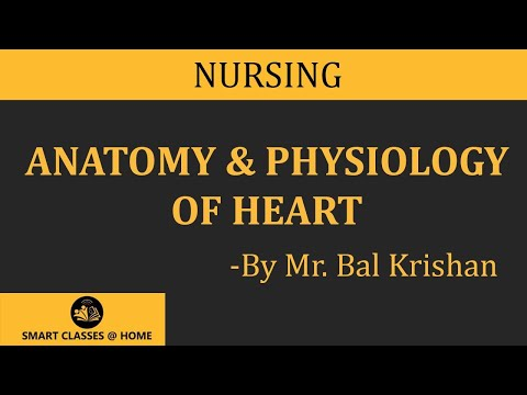 Anatomy And Physiology Of Heartnursing Youtube
