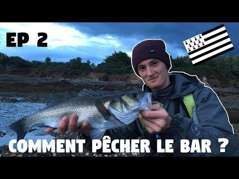 COMMENT pêcher le bar aux leurres du bord ?? + Mon premier GROS bar !! Breizh fishing trip ep 2