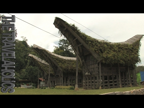 The Toraja Houses Sulawesi Indonesia