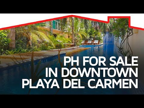 Beautiful Penthouse in the Heart of Playa del Carmen