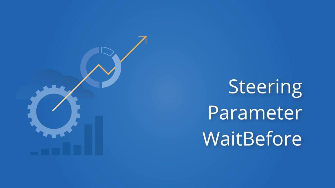 Tricentis Tosca: Steering Parameter WaitBefore