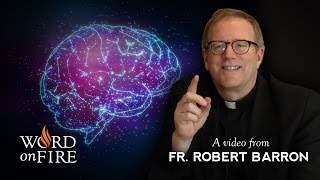 Bishop Barron on Conscience and Morality