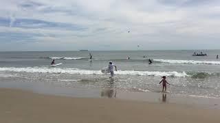 Logstradamus surf competition