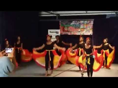 Tropicalfete's Caribbean Cultural Showcase: Children of Culture Dance Group