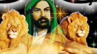 Allahin aslani eli