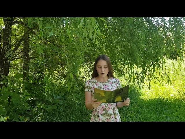Изображение предпросмотра прочтения – ВикторияСергодеева читает произведение «Сосны» А.А.Фета
