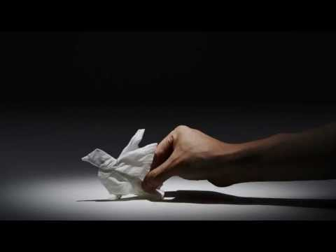 Made as a commercial for Japanese tissue paper company Nepia, watch Yuki Ariga'sTissue Paper Animals.