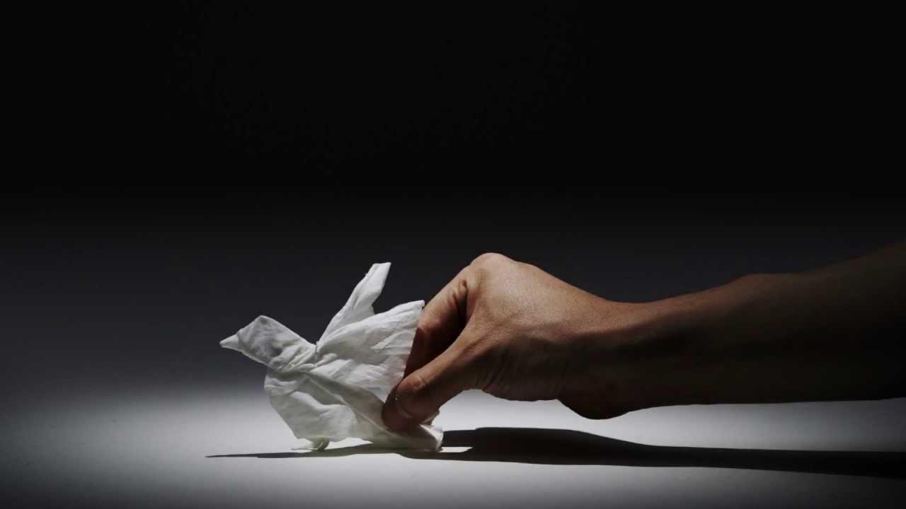 Tissue Animals (nepia)