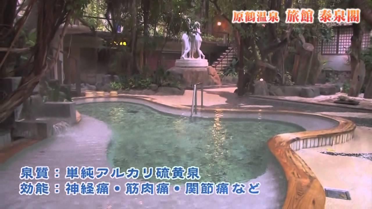 原鶴溫泉/旅館 泰泉閣 - YouTube