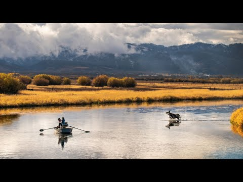 2019 Fly Fishing Film Tour Trailer: NexGen Fly Fishing Movie