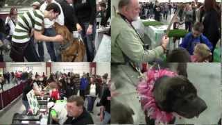 Great Lakes Pet Expo 2012