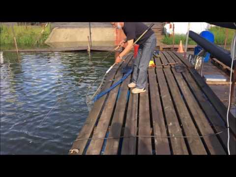 летняя рыбалка на карася - 2017-07-21 09:50:13