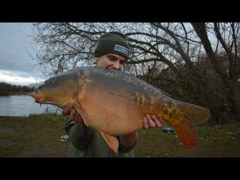 (BIG HIT) Winter Carp Fishing On Private Pit (11 FISH HIT XMAS SPECIAL)