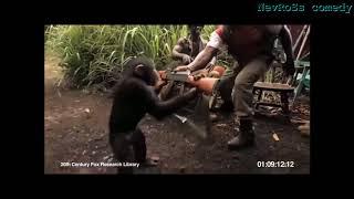 Черная пантера Русский трэш трейлер (Пародия)