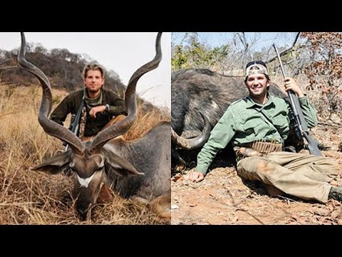 Trump Lifts Ban On Importing Elephant Trophies So His Insecure Sons Can Feel Better