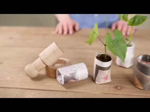 Cheap and Easy Seedling Pots: Use Newspaper