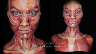 Muscle MAKEUP tutorial   Part 1
