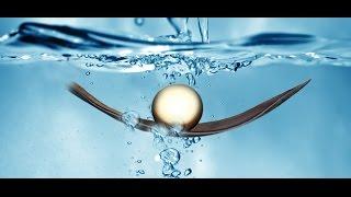 Bionen-Energie: Revolution in der Informationsmedizin