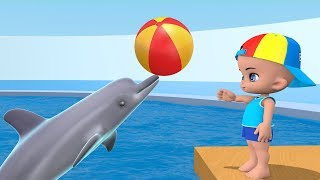 Baby playing with dolphins