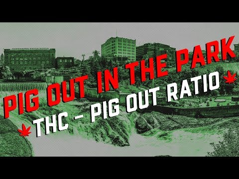 Pig Out In The Park - THC to Pig Out Ratio