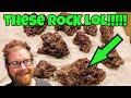 Saltwater Reef Aquarium Life Rocks and Sand