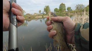 ЛОВЛЯ КАРАСЯ ВЕСНОЙ НА ПОПЛАВОЧНУЮ УДОЧКУ! Рыбалка в Рязанской области!