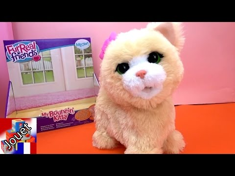 FurReal Friends Chat / Chat Sautillant / Jumping Kitty Unboxing & Demo Hasbro