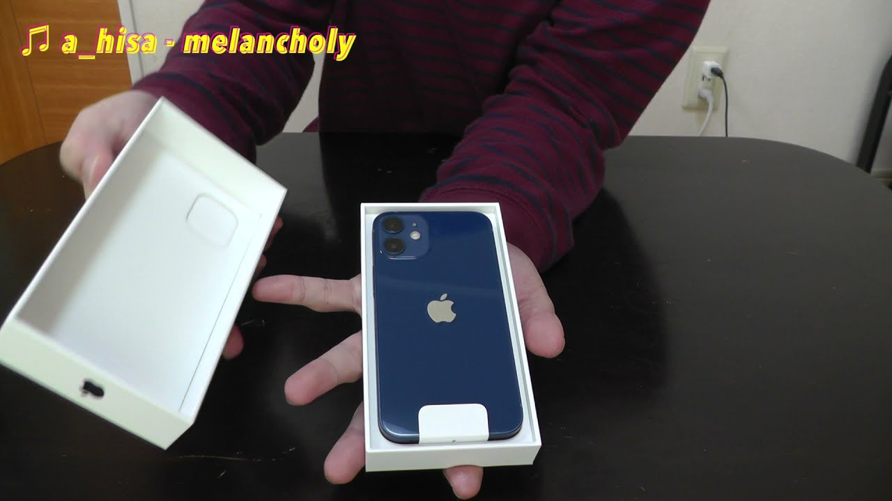 iPhone12mini ブルーを購入した件