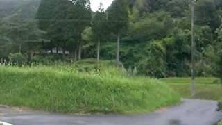 鹿児島市郡山から蒲生に抜ける道を進んでいたら発見。引き返して撮影し...