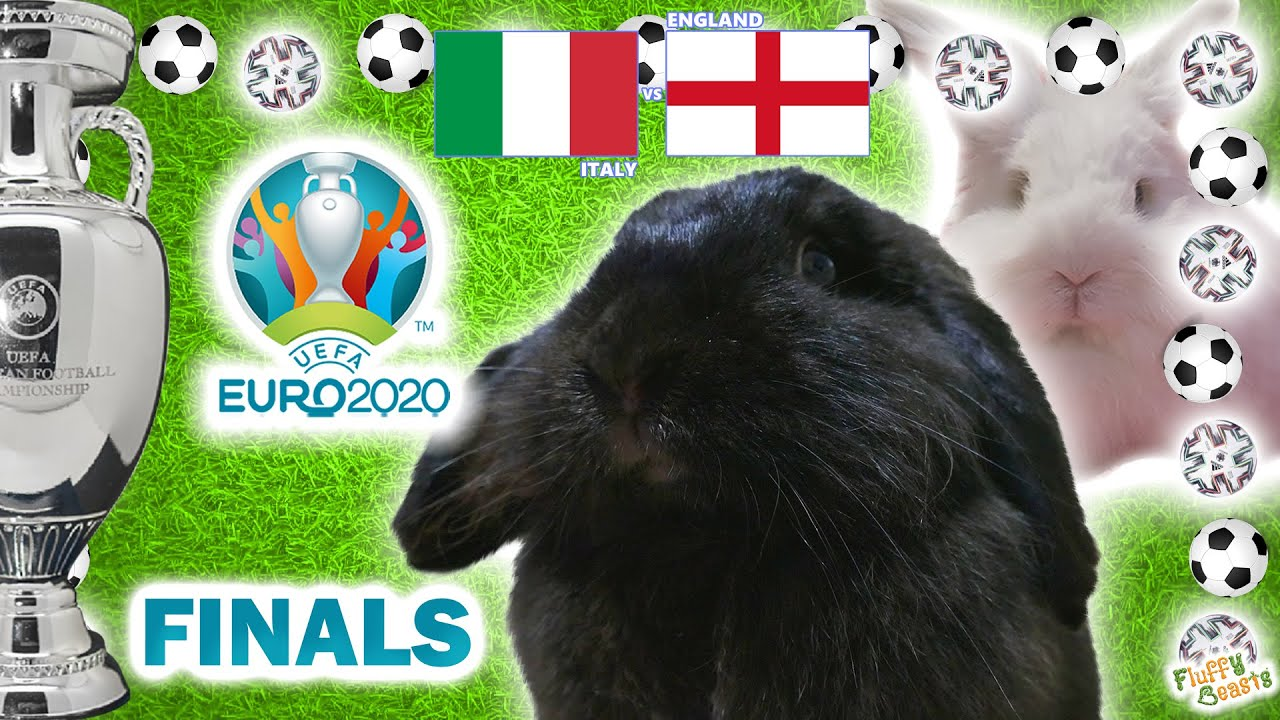 How the result of the England-Italy Euro Cup soccer final will boost ...