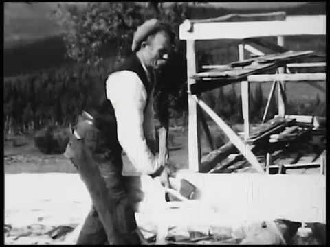 Flat-teljing av tømmer : Vefsn 1933 (stumfilm)