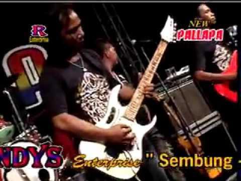 Sukirman   Elsa Safira   OM NEW PALLAPA live in Sarirogo Sumput Sidoarjo