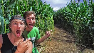 First to finish CORN MAZE WINS! *we are stuck inside*
