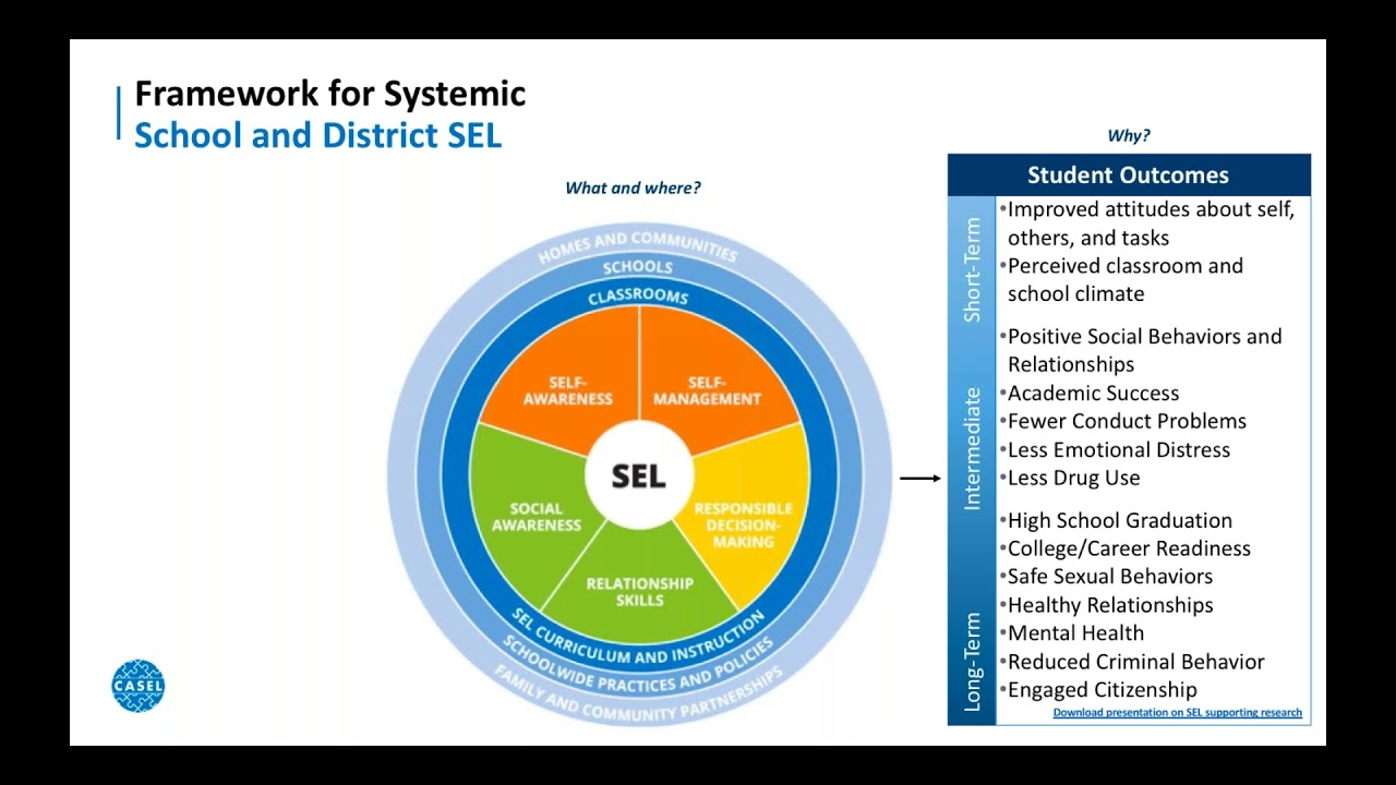 What Makes Sel Work >> District Level Sel