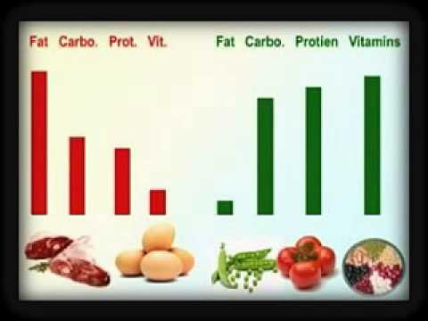 non veg images for chart: Veg n non veg comparison chart youtube
