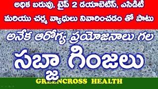 health tips in telugu సబ్జా గింజలు health benefits of sabja seed tuk maria faluda greencross
